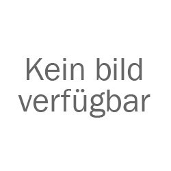 E-Scooter Chopper N1 2000 W